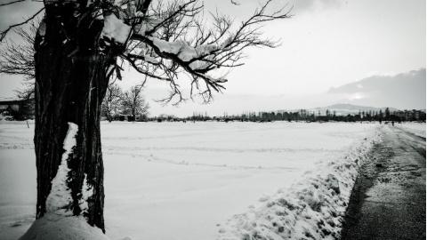 Contrasti Da Cartoline Depoca Neve 2018 La Gallery In Bianco E